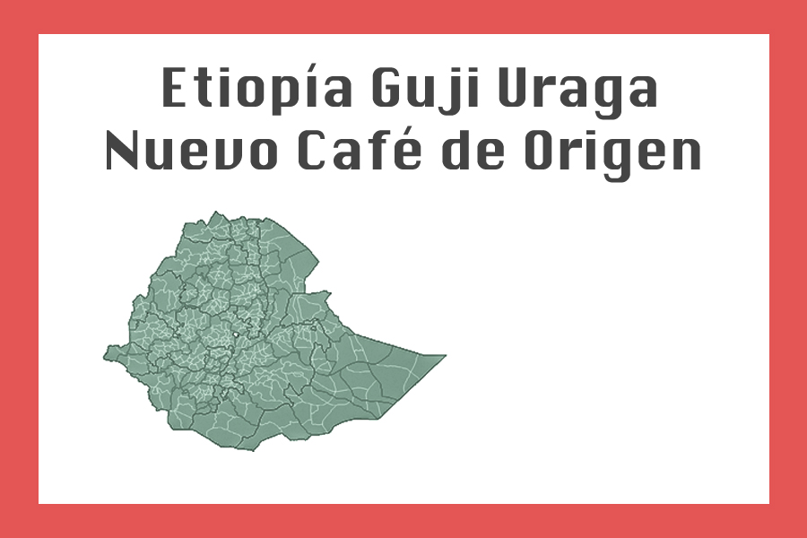 Etiopía Guji Uraga – Nuevo Café De Origen